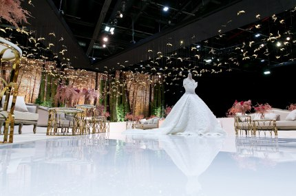 Emirati Weddings Photo 3