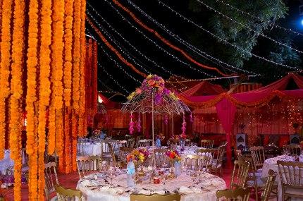 Weddings Photo 16